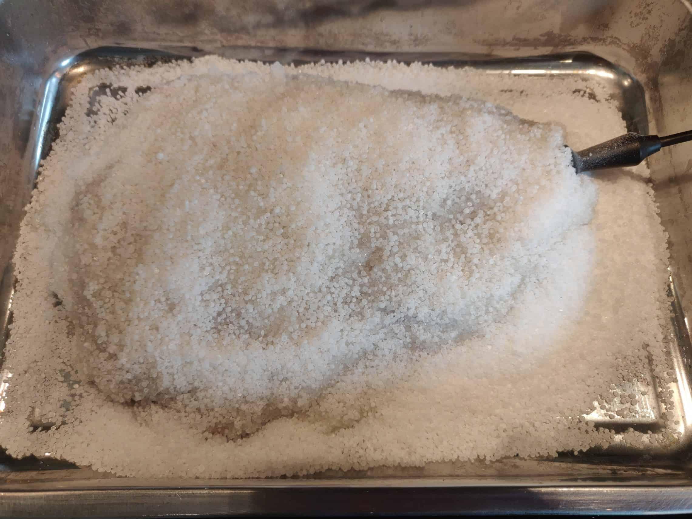 Saltinbakad hjortstek 3